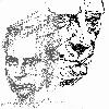 Fetzele Poetului grafica _ http://societateablaga.ro/Poze/carti/fetzele_poetului.jpg